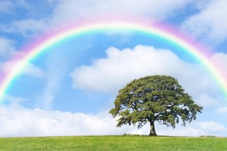 rainbow-landscape